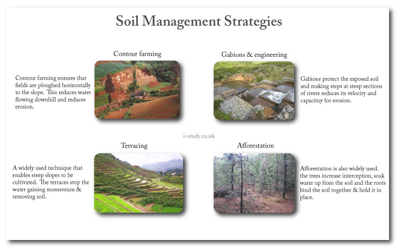 IB environmental systems soil management techniques