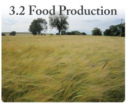 IGCSE Geography unit 3.2 Food production