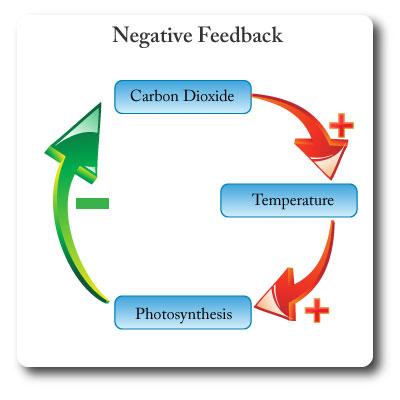 I Study Co Uk Ib Environmental Science Environmental