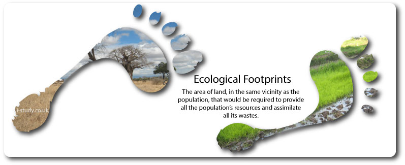 IB environmental systems, ecological footprint