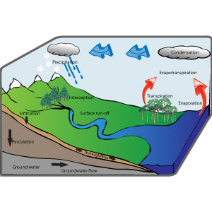 IB environmental systems watercycle